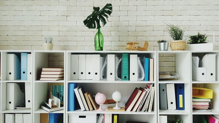 Potted plant on shelf against wall