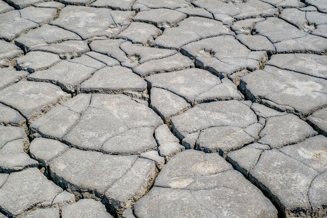Dried earth with cracks on summer sunny day Earth Cracks Arid Climate Backgrounds Close-up Crack Cracked Cracked Earth Cracked Ground Day Dried Earth Dried Mud Drought Full Frame High Angle View Landscape Nature No People Outdoors Pattern Salt Basin Textured
