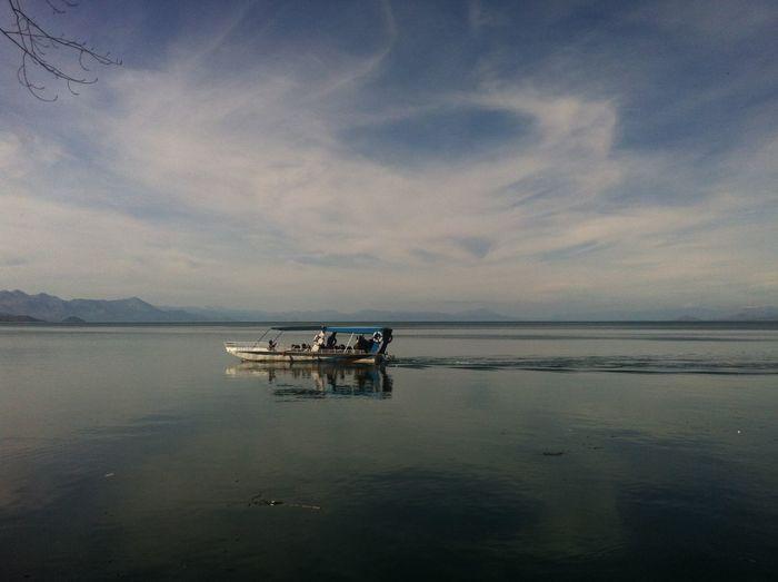 Nature Lake View