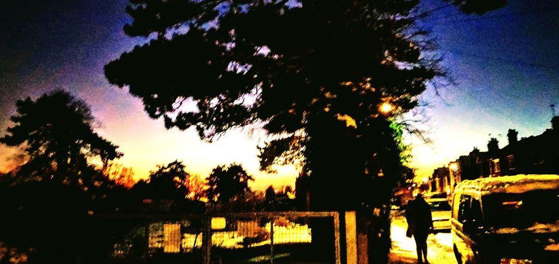 Photowalktheworld Surreal Manipulation Inspirational Amazing Nature person Tree Pixelated Silhouette Sky