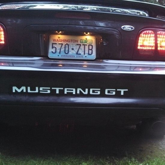 My new decal Mustang GT Dependable Decal black ponylife