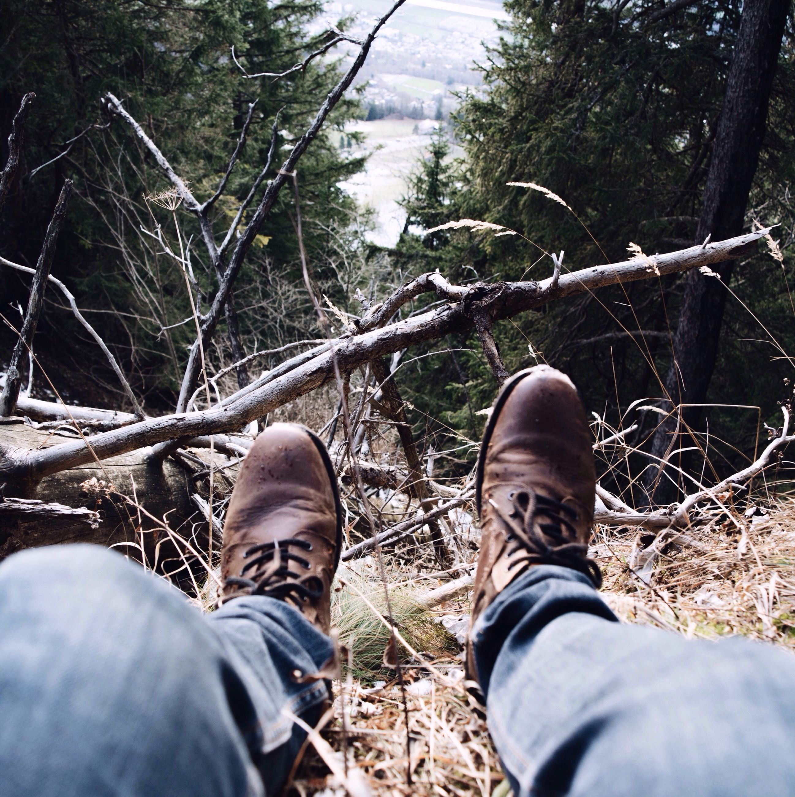 low section, person, shoe, personal perspective, lifestyles, men, leisure activity, jeans, tree, standing, forest, unrecognizable person, casual clothing, footwear, field, nature, human foot
