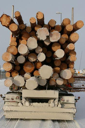 Timber!! Timber Trees Trucks Winter Transportation Stock Stocks