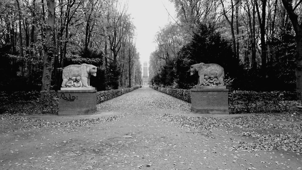 Allein in der Jungfernheide. Two Is Better Than One Jungfernheide Park Berlin Nature Tranquility Battle Of The Cities bei Volkspark Jungfernheide Berlin Monochrome Photography