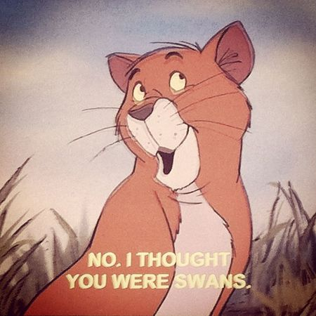 Such a classic <3 Love this scene ^_^ The Aristocats Classic MOVIE childhood old movie 1970 up late cant sleep sarcasm thomas omalley lol