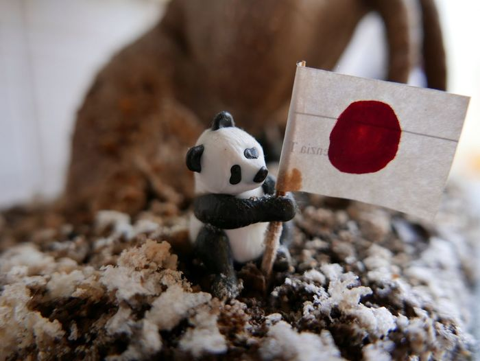 Close up of stuffed toy with flag