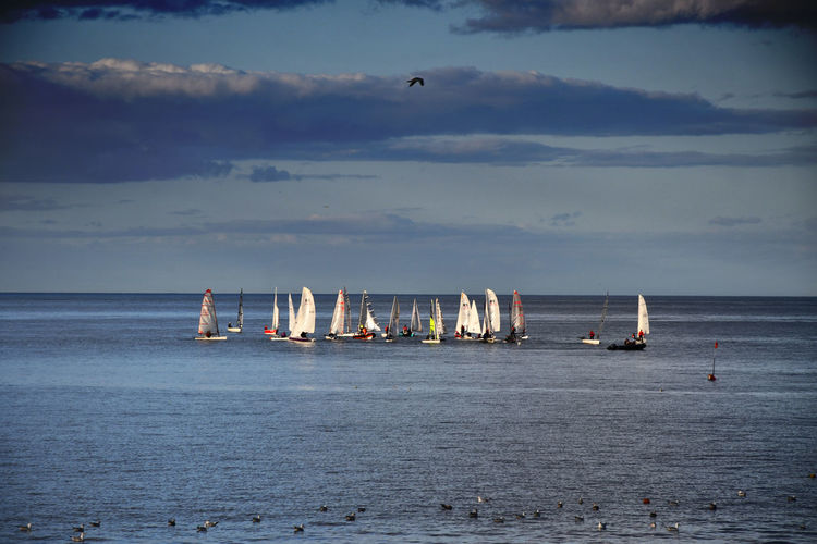 Beauty In Nature Cloud - Sky Day Horizon Horizon Over Water Mode Of Transportation Nature Nautical Vessel No People Outdoors Sailboat Sailing Sailing Competition Scenics - Nature Sky Tranquil Scene Tranquility Transportation Water Waterfront