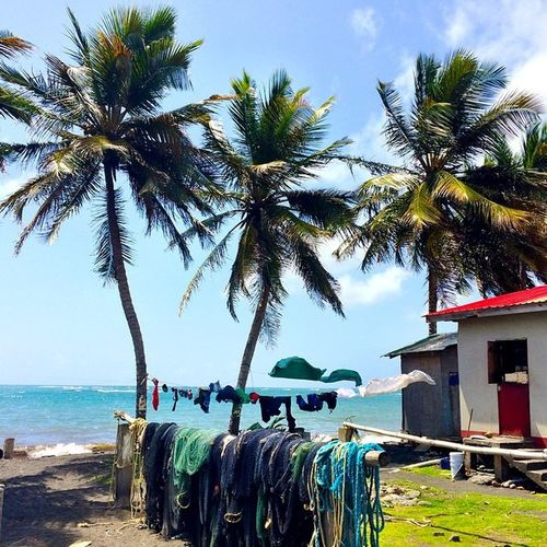 Livefunner Islandlife Islandtour Islandlivity Grenada Kuntry Keephashing Coolrunnings Ig_caribbean Ilivewhereyouvacation Caribbean_beautiful_landscapes Hdr_beautiful_landscapes Westindies_landscape Westindies_pictures Wu_caribbean Shutterbug_collective GOLDENCLiCKS Besspicture