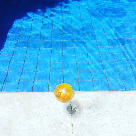 Swimming Pool Water Day No People Blue Close-up Passion Fruit Marakuja Swimming Sunny High Angle View Outdoors Beauty In Nature Nature Swimming