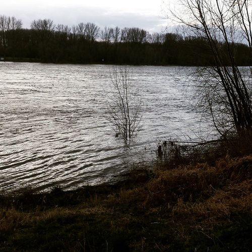 Läuftbeidirrhein Hochwasser