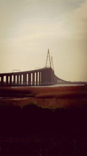 St nazaire et son pont Taking Photos