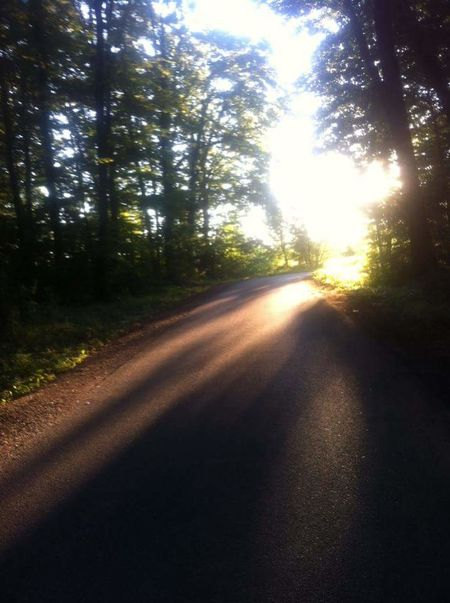 No People Sky Outdoors Sunset Nature Tree Road Tranquility The Way Forward Beauty In Nature