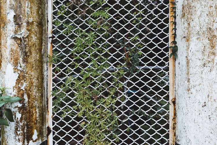 Photos from Taiwan-Trip 2017 Architecture Background Building Exterior Built Structure Close-up Damaged Day Decline Deterioration Door Entrance Fence Iron - Metal Metal No People Old Outdoors Protection Rusty Safety Security Weathered