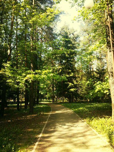 Minsk Belarus Nature Amazing