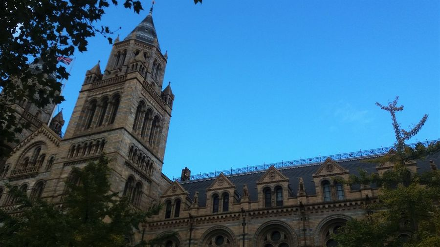 Architecture Building Architecture Building Exterior London Destination Low Angle View Natural History Museum Natural History Museum London Sky Tourist Destination