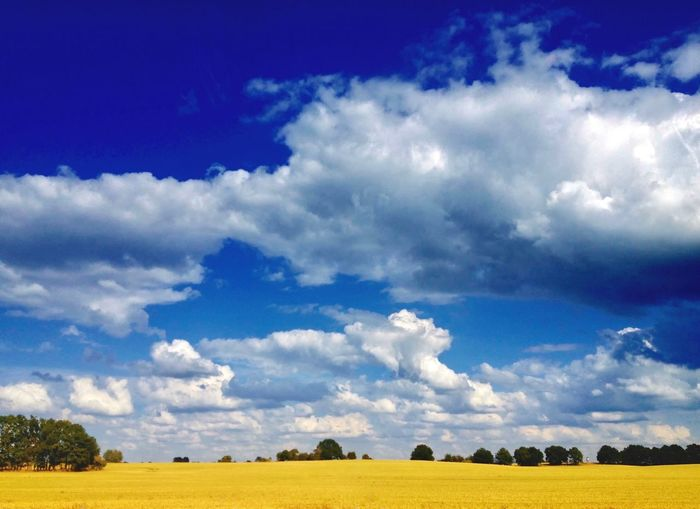 storm is coming. Agriculture Autumn Beauty In Nature Blue Cloud - Sky Day Dramatic Dramatic Sky Drawing Field Field Grass Hill Landscape Mecklenburg-Vorpommern Nature No People Outdoors Rural Scene Scenics Sky Tranquil Scene Tranquility Tranquility Wood