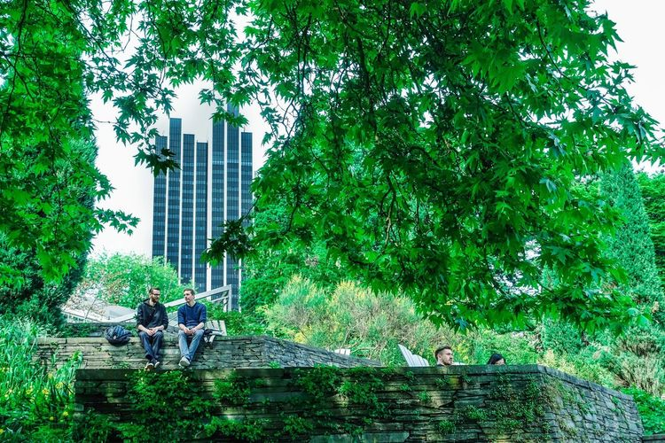 Green and the city... Summer In The City Planten Un Blomen Hamburg Relax Citylife Park Plant Architecture Tree Built Structure Building Exterior Real People Day Green Color Growth Nature Men Outdoors Building #urbanana: The Urban Playground