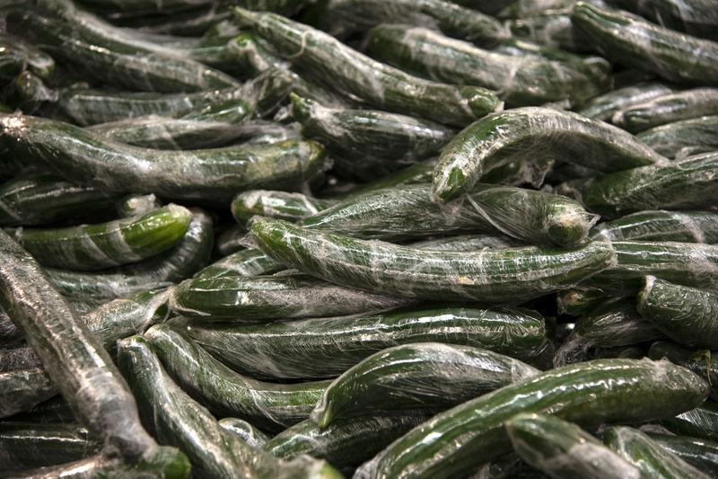 Full frame shot of cucumber