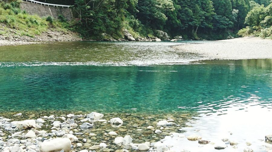 古座川② Beauty In Nature Confluence Of Two Rivers River Nature Wakayama Kayak crystal clear Japan Water Tree Lake Reflection