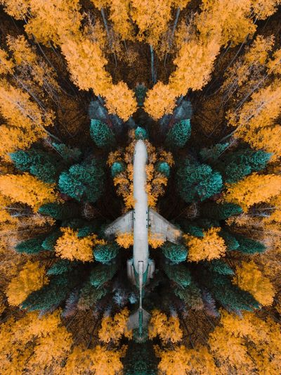 @snickersv | nickverbelchuk.com Drone  Full Frame Day Close-up Backgrounds Pattern Outdoors Textured  Plant Growth Beauty In Nature Sunlight Green Color Yellow High Angle View Nature Metal Creativity Built Structure