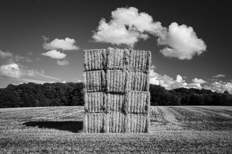 Hay bales on wooden post on field against sky