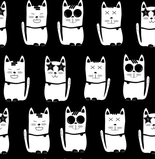 Live a colorful life Funny Kitty Aniamls Animal Themes Animals Backgrounds Black And Whitee Design Fasion Pet Seamless Pattern Style Sun Glasses