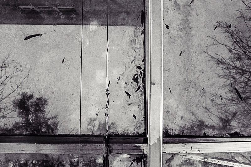 wind-swept roof