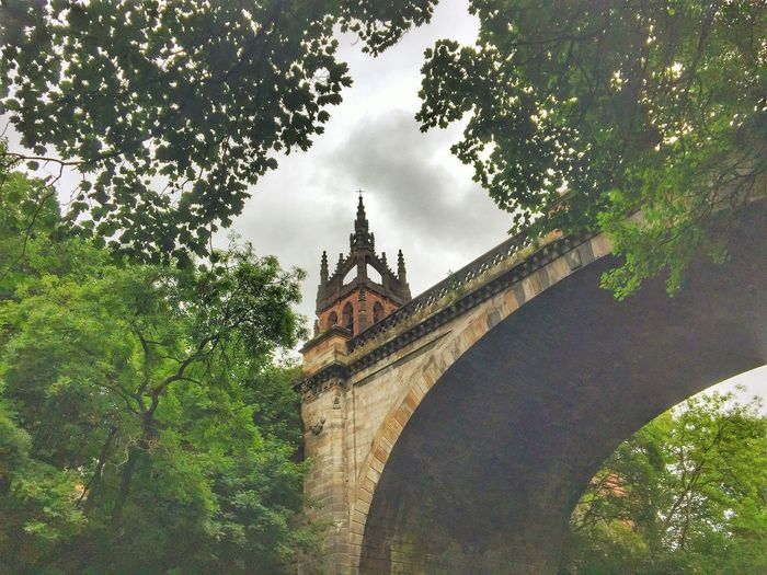 Tree Architecture Built Structure Low Angle View Day No People Outdoors Nature Sky Branch Building Exterior Travel Destinations Growth Place Of Worship Underthebridge Bridge City Low Angle View History Eyeem Scotland  Eye Em Scotland Scotland GLASGOW CITY Kelvingrove Park Architecture