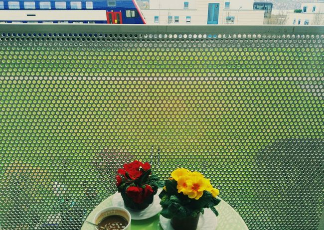 Afternoon Coffee Urban Spring Fever Red+ Yelow Mini Flowers From My Point Of View Pattern, Texture, Shape And Form Green Green Green!  Green Grass Balcony View S-bahn Snapshot Handy Shot Vscocam Frontal Shot Tristesse Urbaine