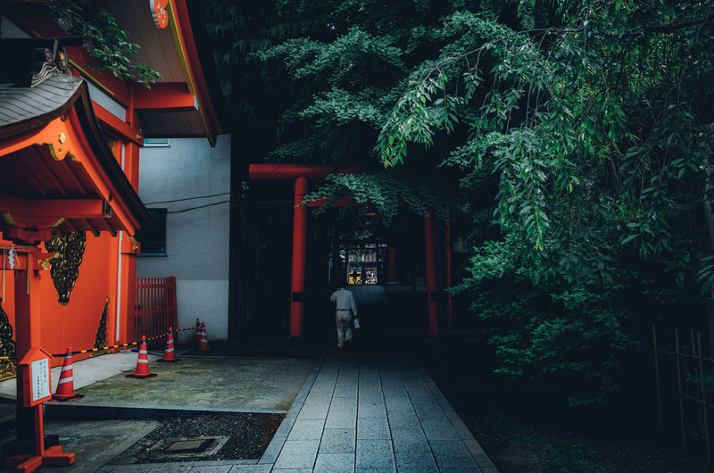 Asian  Daytime Japan Japan Lovers Japanese  Japanese Culture Man Rear View Road Shrine Tokyo Tranquility Travel Trees Trip Worship Architecture Building Building Exterior Built Structure City Direction Entrance Footpath Growth Illuminated Japan Travel Japan Trip  Journey Lighting Equipment Nature Night No People Outdoors Plant Residential District Street Temple The Way Forward Tranquil Scene Travel Destinations Tree Walking The Street Photographer - 2018 EyeEm Awards The Creative - 2018 EyeEm Awards #urbanana: The Urban Playground