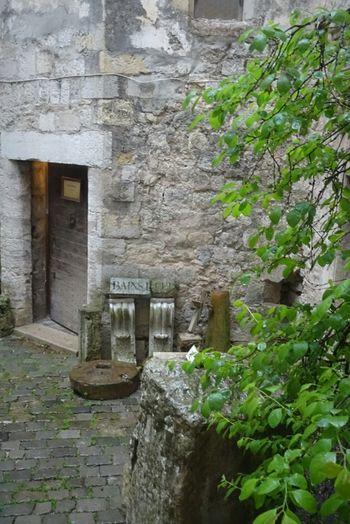 Entrance Cours Intérieure Jardins Plant Architecture Architecture Plant Histoire Palais Comte