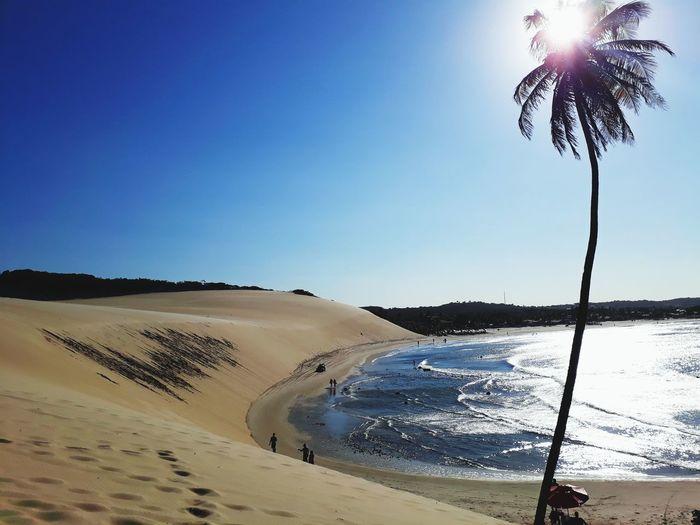 Beach Genipabu