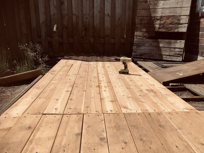 View of bird perching on wooden plank