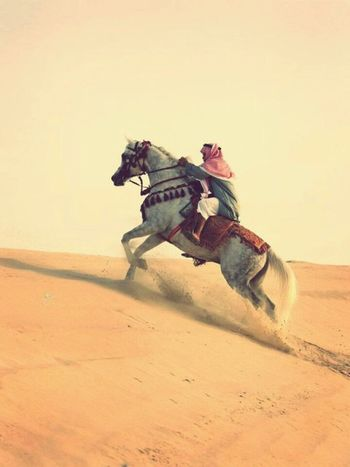 Sand Travel Adventure One Person People Nature Dessert Arabian Travel Arab Cultures Arabic Style Arabic Jazirah Middle East Arabs Day Only Men Men Real People Arts Culture And Entertainment Nature