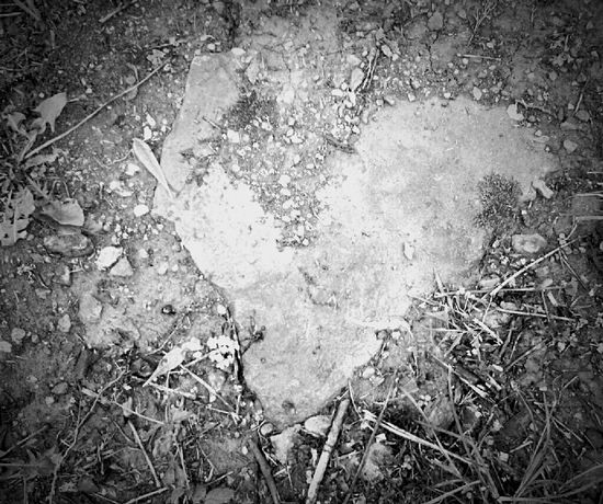 Moms House Spring EyeEm Best Shots - Black + White Blackandwhite Black & White Hanging Out EyeEm Nature Lover Nature_collection Rock Heart