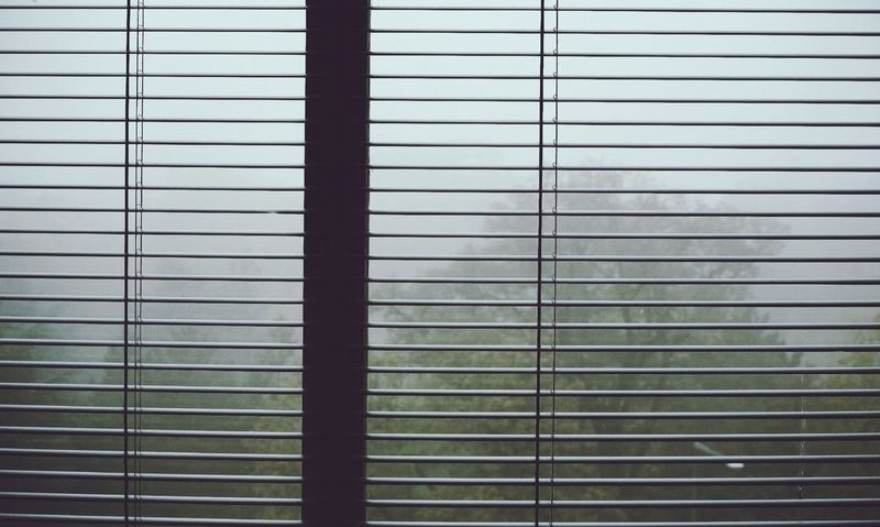Look Out The Window Foggy Morning Simple Moment Autumn Colors Depth Of Field