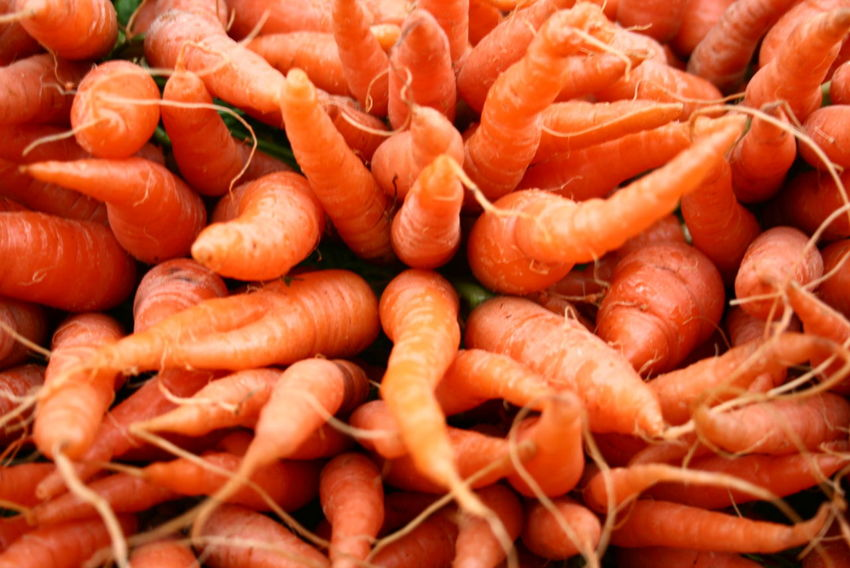 Abundance Baby Carrots Backgrounds Carrot Close-up Day Food Food And Drink Freshness Full Frame Healthy Eating Indoors  Large Group Of Objects No People Orange Color Raw Food Ready-to-eat Retail  Seafood Supermarket Vegetable แครอท