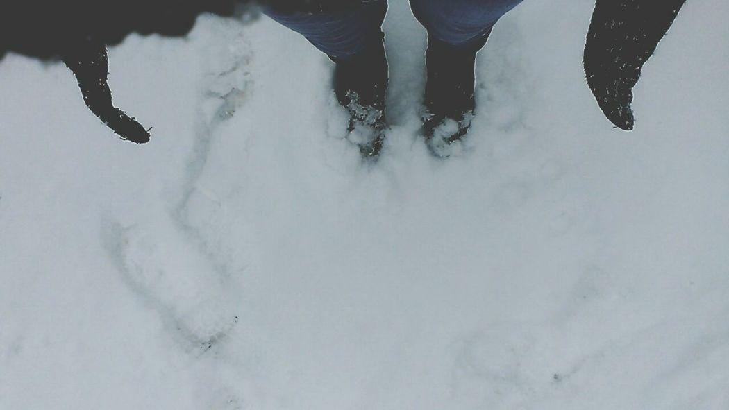 Colorado Snow