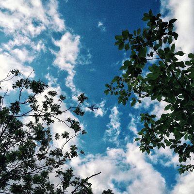 That's Me Hello World Relaxing Enjoying Life 手机摄影 Okphotography IPhone