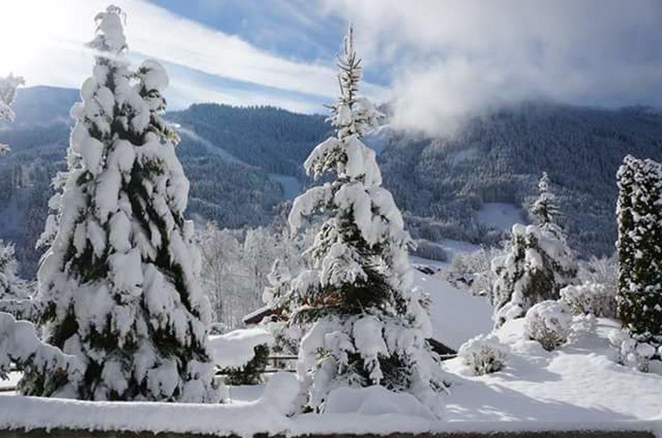 Bernex France Winter Wonderland Wintercloud