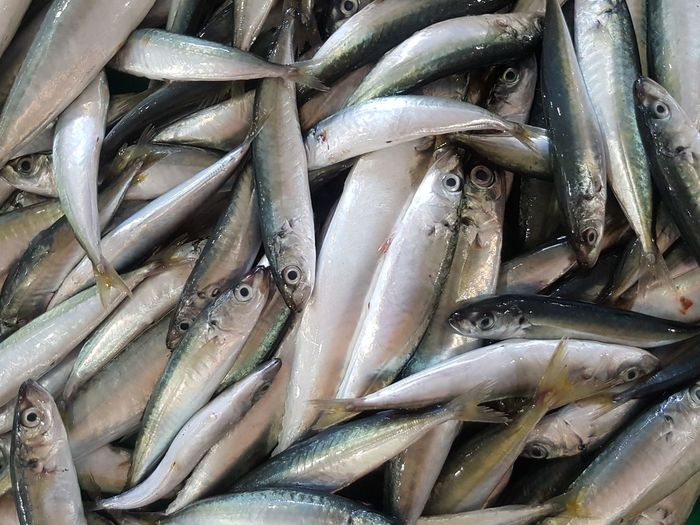 Close-up Vietnamese Food Catch Of Fish Raw Food Market Food And Drink Freshness Fish Food