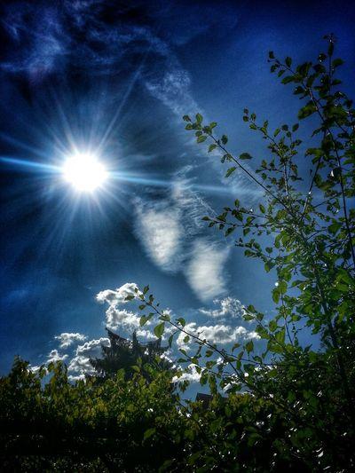 Sun Light Sky And Clouds