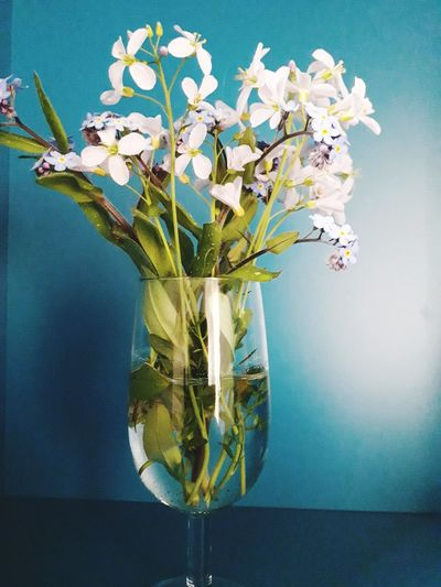 A Little Glass Of Little Flowers EyeEm Selects Plant Wilted Plant Bunch Of Flowers Flower Arrangement Summer Exploratorium EyeEmNewHere