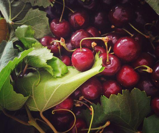 Cherry Cibachrome E6 Fruit Alternative Process Green Leaf Basket