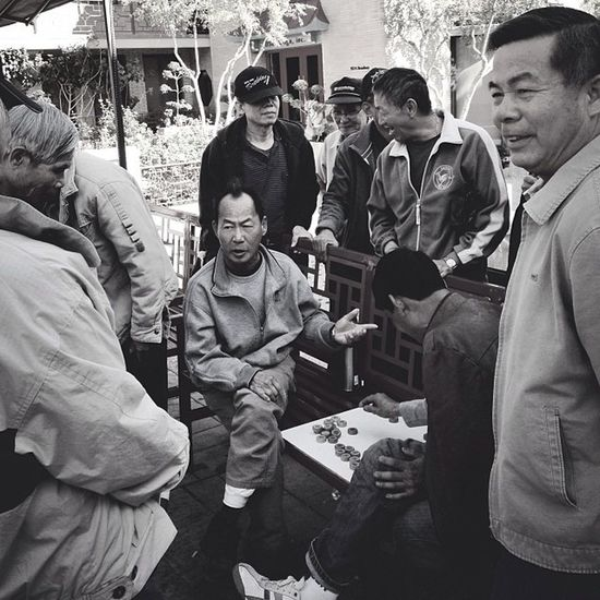 ??The Players Club??Chinesechess Bnwportrait