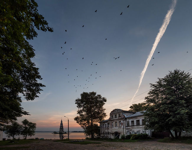 Low angle view of vapor trail and birds flying against sky during sunset