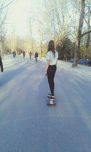 Summer Amsterdam Skate Longboard