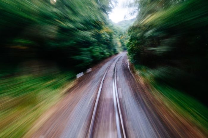 Into The Forest The Way Forward Railway Track On The Move Time Is Running Out Railroad Track Local Train October October 2016 Green Transportation Japan Photography Good Bye Travel Green Color