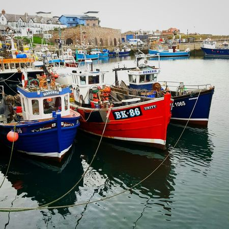 Fishing boats Nautical Vessel Moored Mode Of Transport Transportation Outdoors Water Day No People Sea Sky Fishing Boat Fishing Boats Trawlers Harbourside Harbour & Ships Harbour Life Seahouses Northumberland_uk