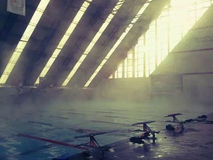 Swimming Relaxing Train Hard Love...